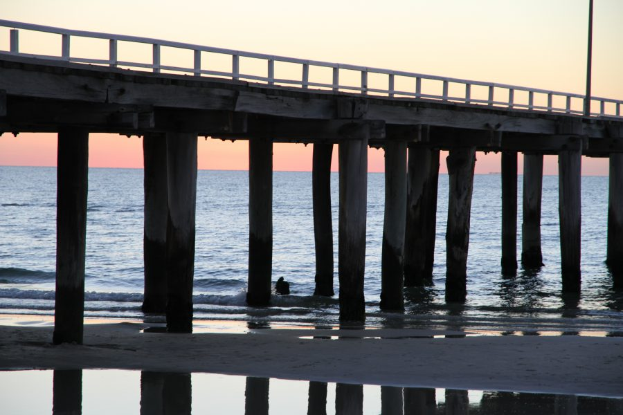 Seaford Jetty