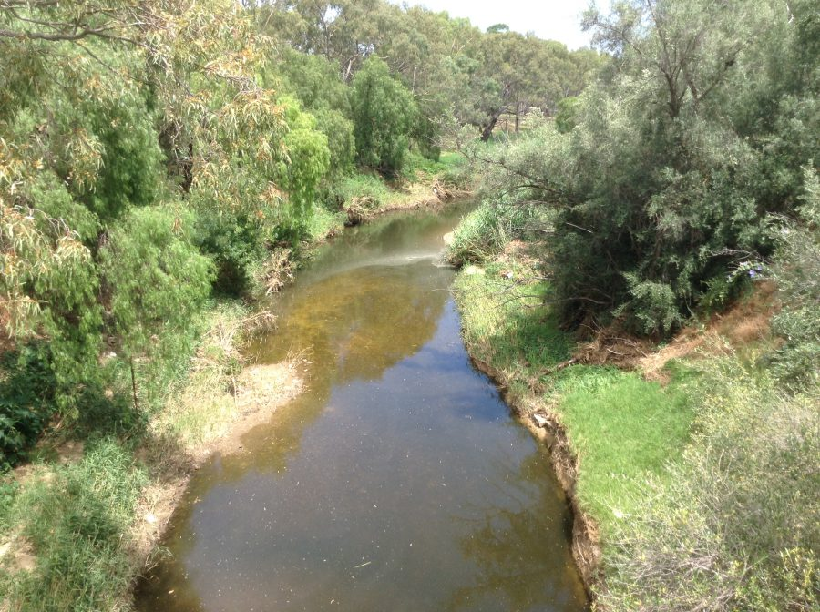 Walkerville Creek