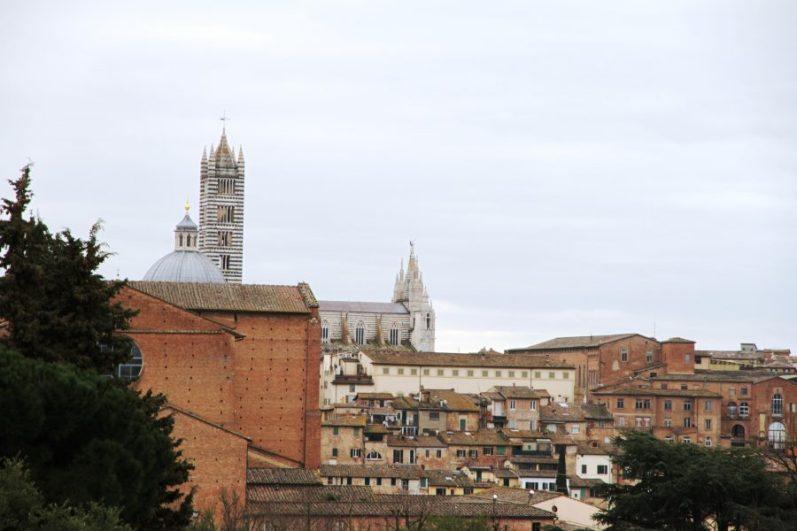 Siena23