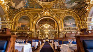LTB930-so-galerie-restaurant-so-2014-photo-background07-fr