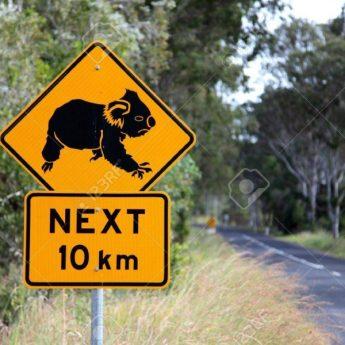 7849054-koala-road-sign-in-eastern-australia