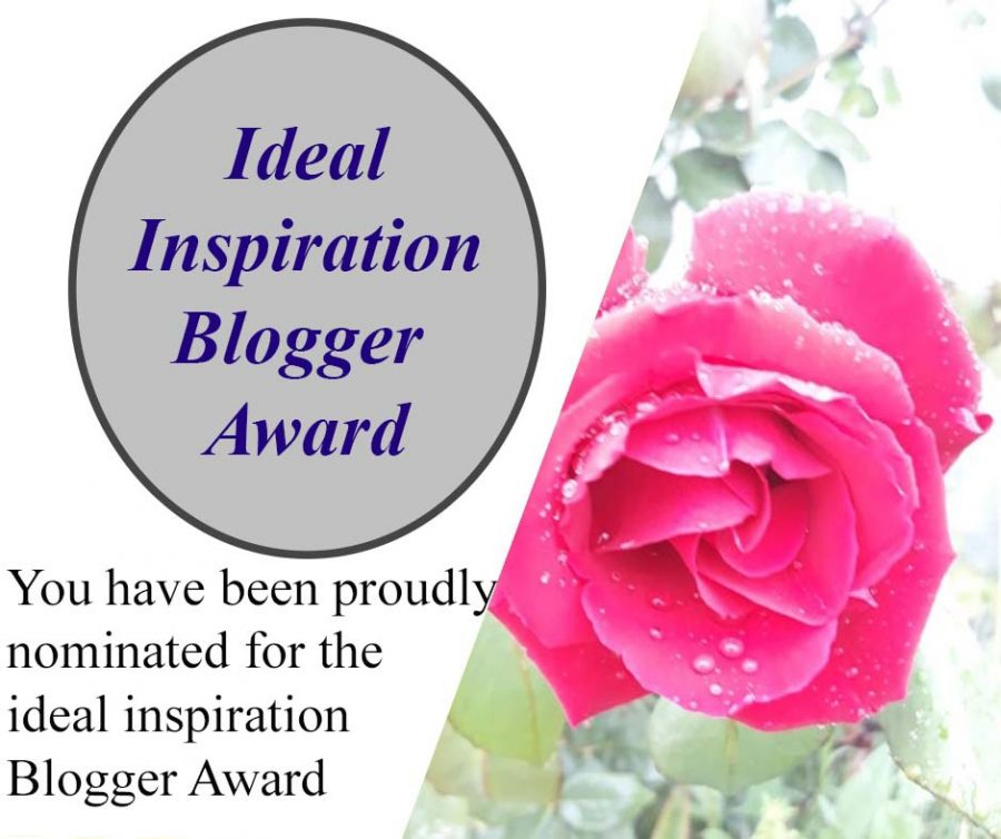 Ideal Inspiration Blogger Award I – III – View from the Back