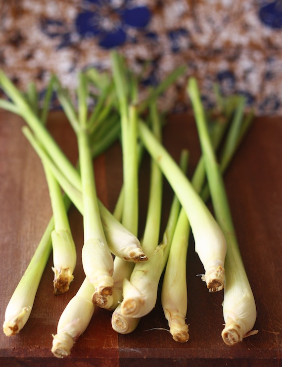 Spices Unearthed: Lemongrass   Season with Spice
